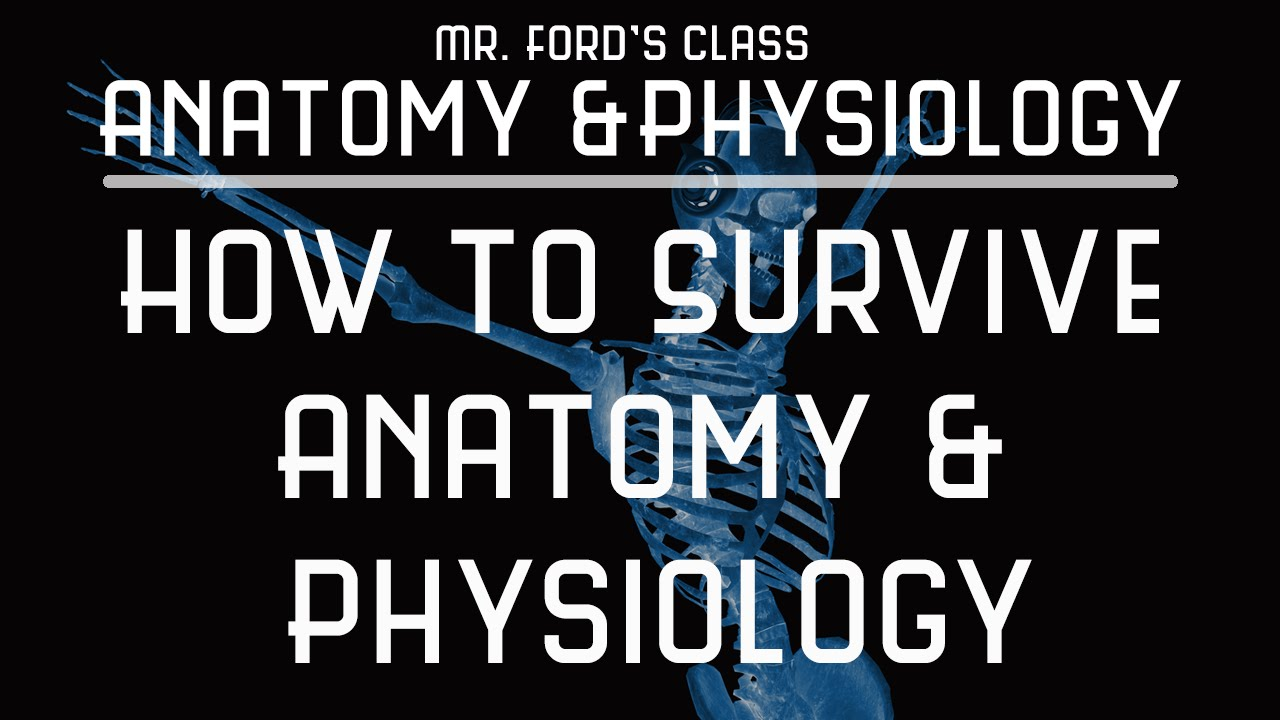 How To Survive Anatomy & Physiology Introduction & Survival Tips ...