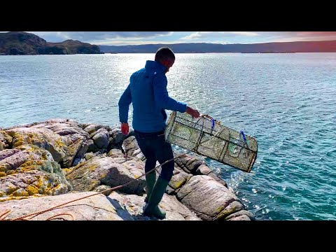Lobster Pot Fishing, Cliff Jumping And Shrimping - Scottish Highlands