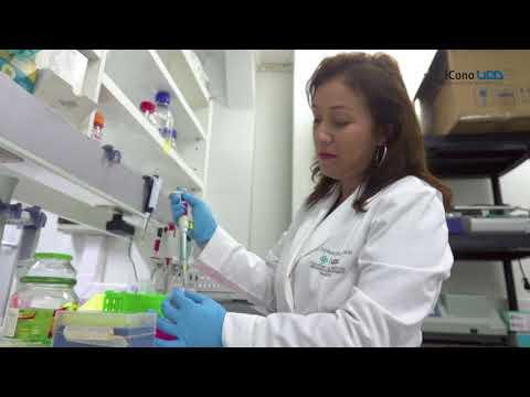 Diagnóstico prematuro del cáncer de mama