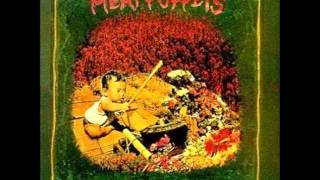 Watch Meat Puppets Melons Rising video