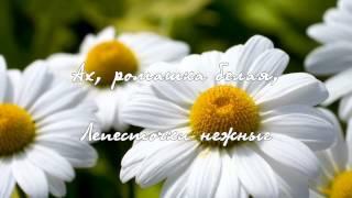 Песня 'Ромашка белая' - поет Николай Гнатюк