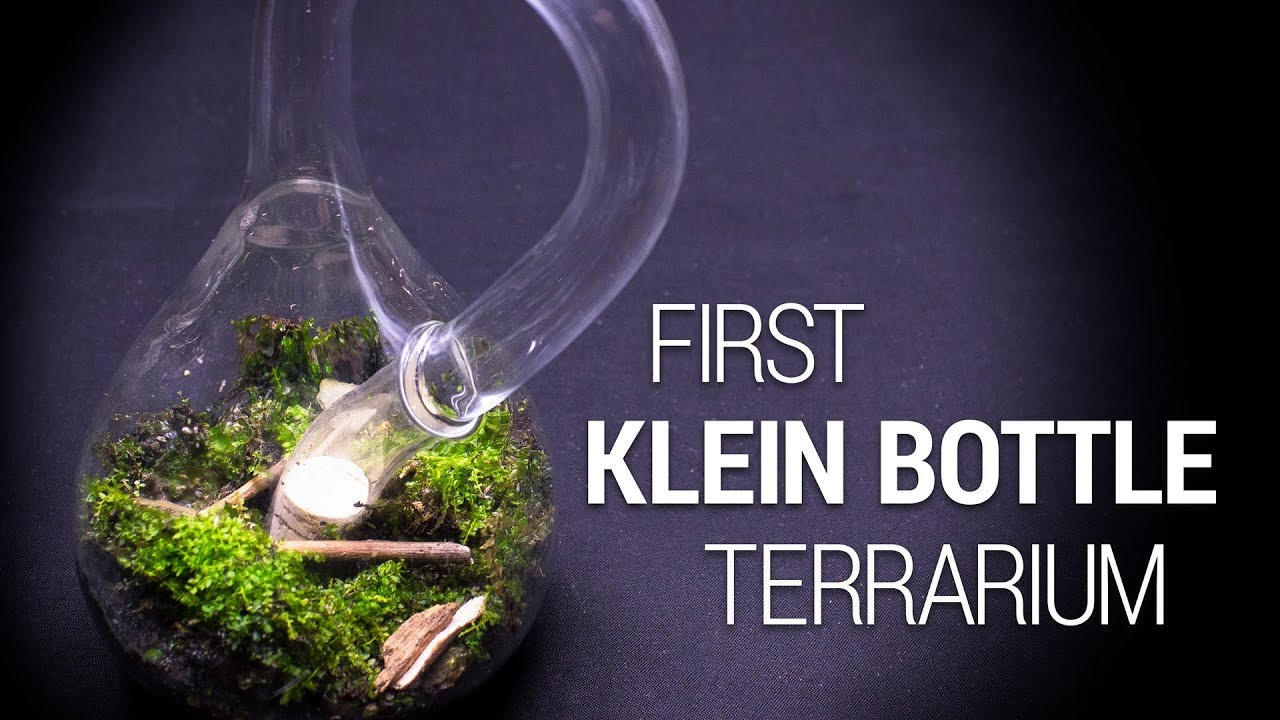 The First Klein Bottle Terrarium Youtube