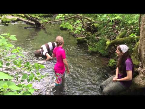Who Can Hold Their Head Under Cold Creek Water The Longest #1