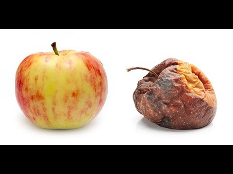 The Fructose Myth Debunked: 🍑 Fruit Does Not Make You Fat