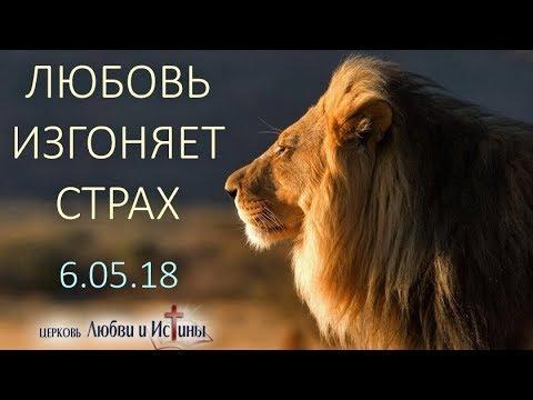 Василий Билецкий - Любовь изгоняет страх