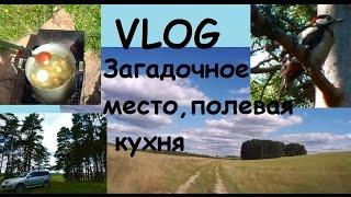 Vlog Загадочное место/дятел/еда туриста/цапля