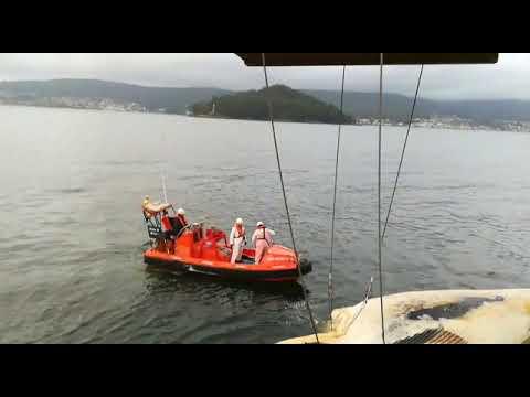 Aparece flotando en la costa de Bueu el cadáver de una ballena de 12 metros