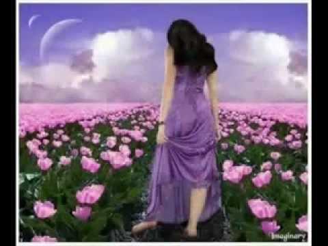 Hindi Ghazal Song---mp4