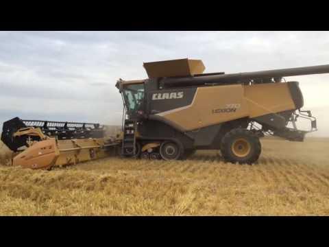 Claas Lexion 770 Versluis grain farms in Saskatchewan tarwe combinen Trekkerweb