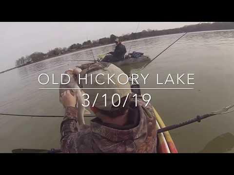 Old Hickory Lake, Hendersonville, TN Fishing 3-10-19