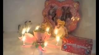 Музыкальная свеча для торта Аленький Цветочек(http://www.matushka.ru/index.php?op=cat&sec=19&gn=7332 Музыкальная свеча Аленький Цветочек для торта это огненный фонтанчик, раскры..., 2014-05-06T20:47:48.000Z)