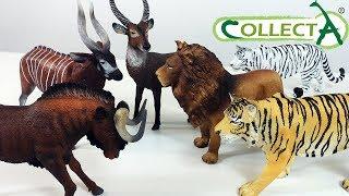 ЛЕВ и ТИГР, Козел и Антиолопа и другие Животные Африки - ИГРУШКИ для детей Collecta