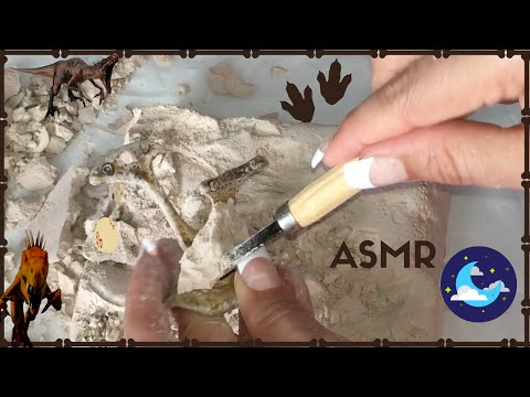 ASMR Dinosaur Excavation with Wood Carving Set