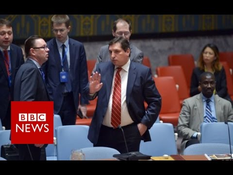 What are the implications of the US air strike on Syria? BBC News