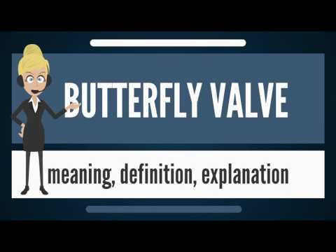 What is BUTTERFLY VALVE? What does BUTTERFLY VALVE mean? BUTTERFLY VALVE meaning & explanation