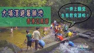 【全港親子行山悠遊樂】第一集-香港亞馬遜生態遊 大埔滘避暑勝地