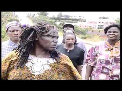 Professor Wangari Maathai  - The Profile