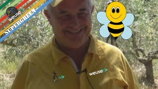 1 of 10 - Basi di apicoltura con Fernando - Introduzione al mondo delle api per futuri apicoltori