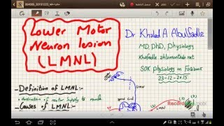 Lower Motor Neuron Lesion (LMNL) (1-2016) by Dr Khaled A Abulfadle