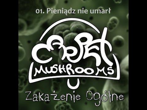 Carpet Mushrooms - Pieniądz nie umarł [Audio]
