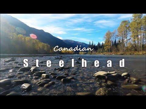 Autumn Steelhead Fishing In Stunning British Columbia