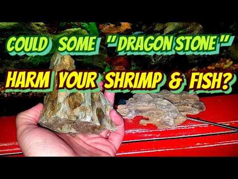 "Shrimp Keeper Warning! Some ""Dragon Stone"" is not Ohko & Can Harm Shrimp or Fish via TDS & PH"