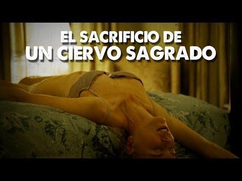 el-sacrificio-de-un-ciervo-sagrado---reseña-/-review-sin-spoilers