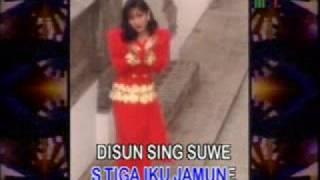 Gambar cover ikke nurjanah - sun sing suwe(S3)