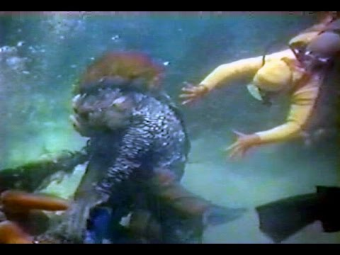 Alien Deep Ocean : Amazing Documantary