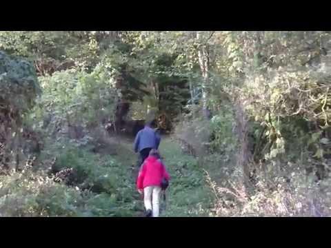 Habichtswald - Burgruine Schauenburg bei Hoof