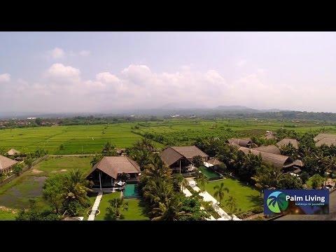 Palm Living - Bali Villa Sheeba - For Rent in Bali