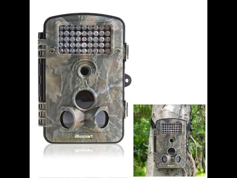 Review of: Wildlife/surveillance/trail outdoor camera by Blusmart