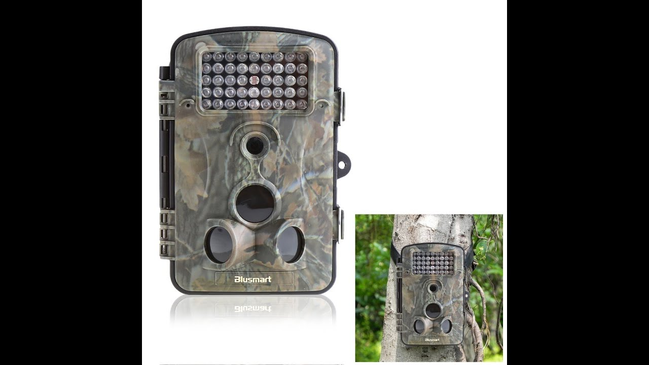 Review of: Wildlife/surveillance/trail outdoor camera by Blusmart ...