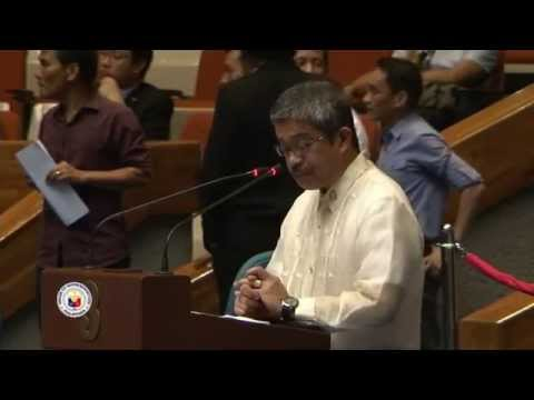 BM Rep. Zarate on the observance of the 19th UN International Day of the Indigenous Peoples