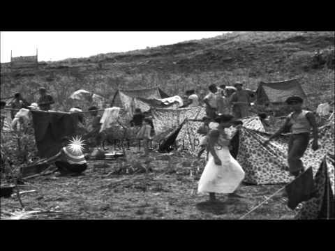 Tent village for the captured natives in the Guam Island, United States. HD Stock Footage