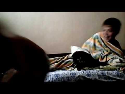 Влагере мальчик описался в кровать видео фото 532-489