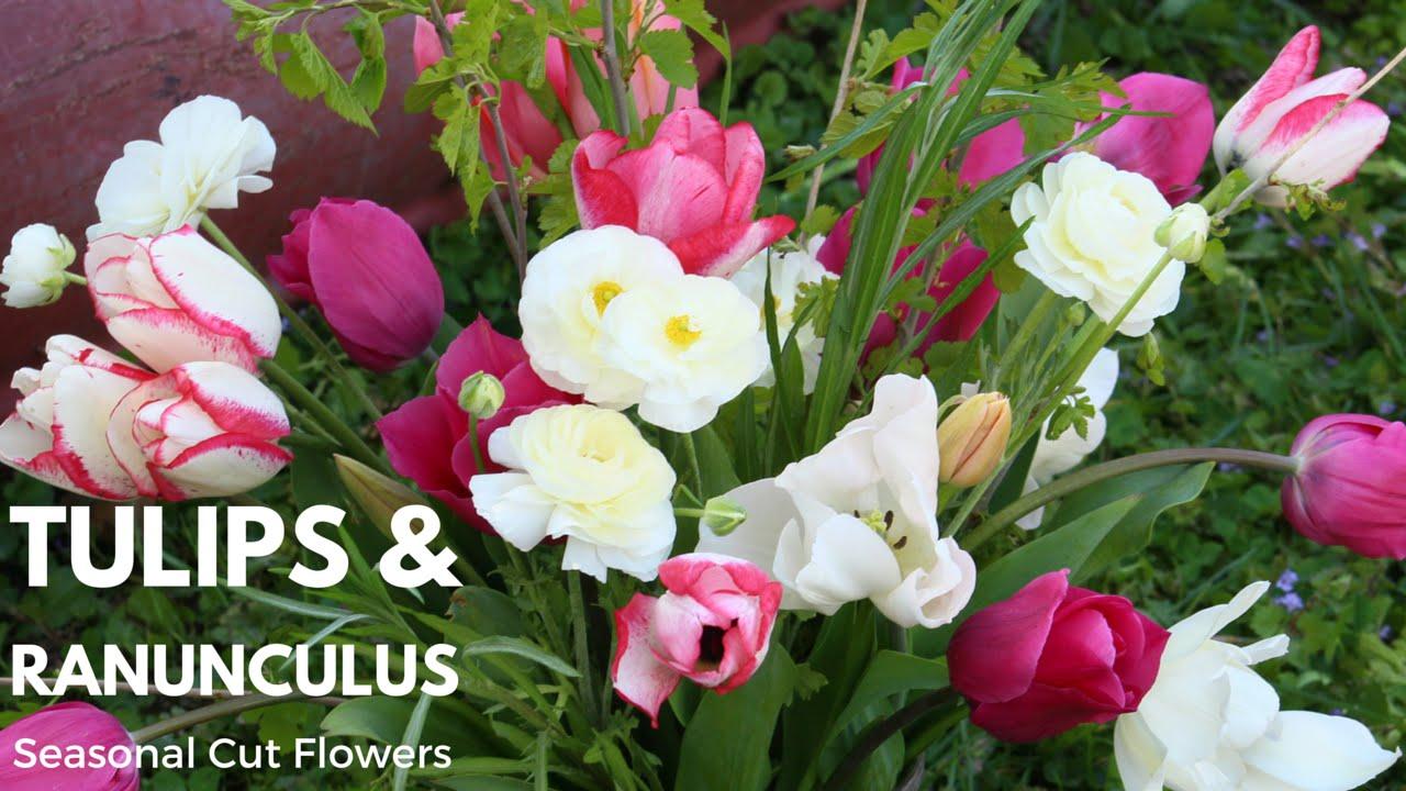 Pink Spring Flower Arrangement Tulips And Ranunculus Seasonal Cut