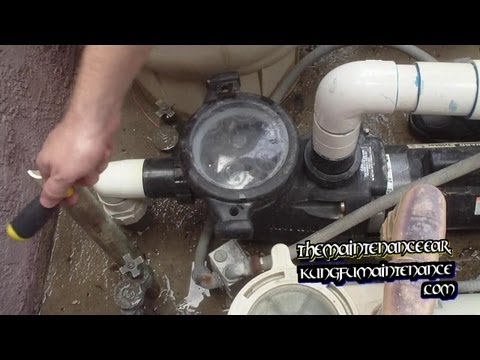 How To Clean Out Swimming Pool Or Spa Filter Pump Baskets