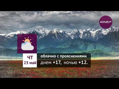 Погода в Алматы с 20 по 26 мая 2019
