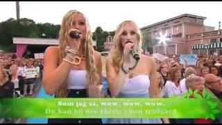 Timoteij - Ska Vi Plocka Körsbär i Min Trädgåd Live @ Lotta