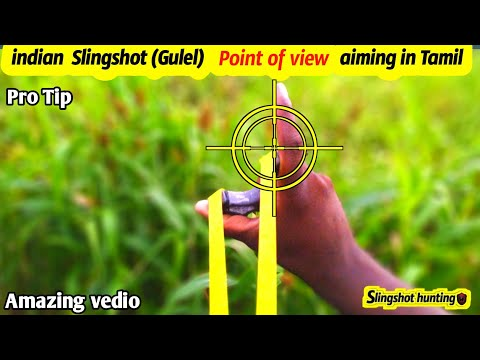 How To Aim A Slingshot  Point Of View Method |Slingshot Hunting|bushcraft| Tamil Hunting