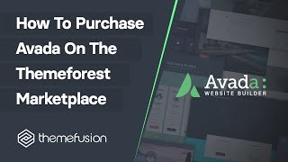 How to Purchase Avąda On The Themeforest Marketplace