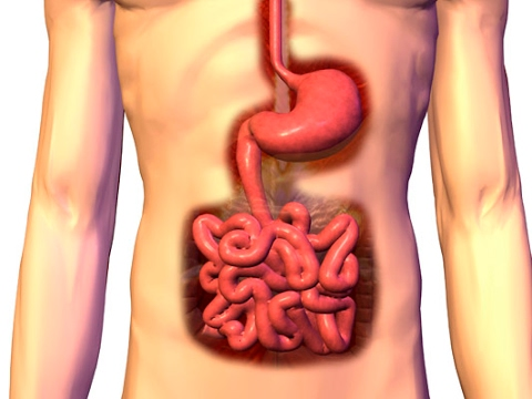 Natural colon cleansing methods That Really Works for Detox Your Colon