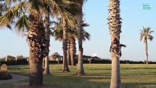 Прогулка по Таелет, набережная г. Нетания, Израиль | Жизнь в Израиле(Расслабляющее видео прогулка по таелет - прогулочная улица на побережье Средиземного моря, г. Нетания Закат..., 2016-01-20T12:34:11.000Z)