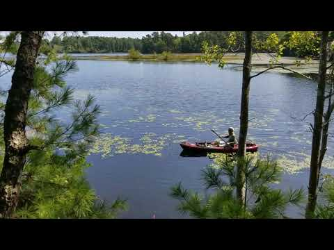 Weekend on Myles Standish State Forest - Calm Waters - Águas tranquilas