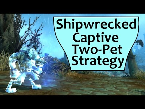 Shipwrecked Captive 2 Pet and Sternfathom's Journal