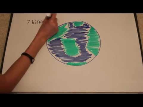 Global Warming (School Project)