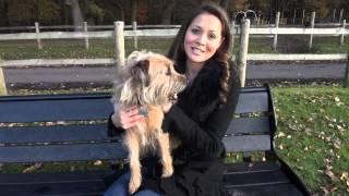 Benson - Dog Cloning Competition UK Entry