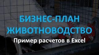 Бізнес-план у сфері тваринництва зразок розрахунків в Excel