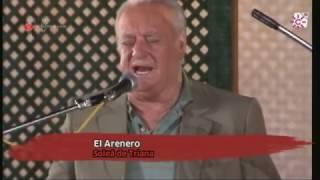 ANTONIO EL ARENERO - JOSÉ LUIS POSTIGO - SOLEÁ DEL ZURRAQUE - VELÁ DE SEÑA SANTANA . ALTOZANO 1.989